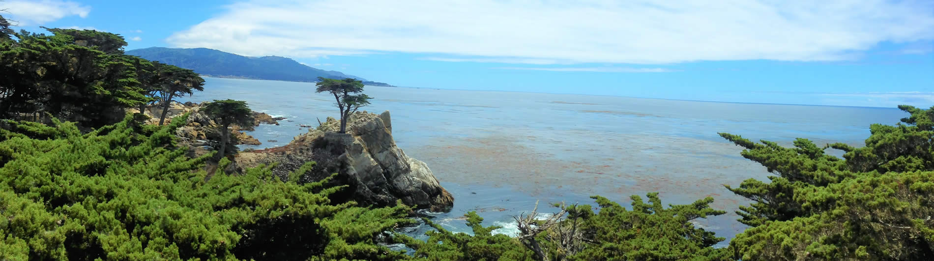 lone cypress beach scene in pebble beach